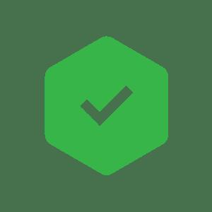icone check vert